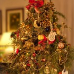 Come fare un Albero di Natale alternativo