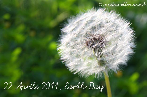 hearth day, il giorno della terra, soffione fiore,