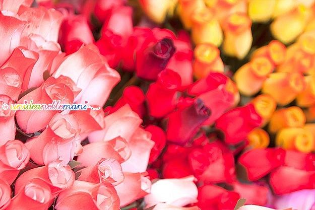rose-mamma