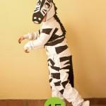 costume da zebra