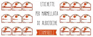 Etichette marmellata di Albicocche da stampare