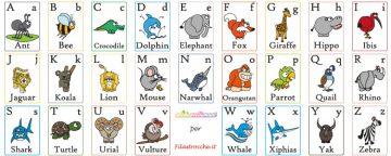Nuova collaborazione con Filastrocche.it: l'ABC book, da sta...
